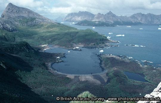View of Bird Island research station from the top of Stejneger Peak  with South Georgia in the background