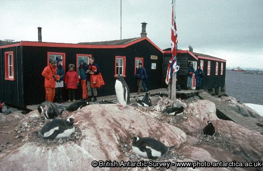 Visitors to the Antarctic Heritage site of Port Lockroy on the Antarctic Peninsula. Port Lockroy was established in 1944 is the only surviving base from Operation Tabarin and is one of the most visited tourist sites in Antarctica.
