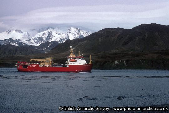 RRS Ernest Shackleton off King Edward Point, March 2001