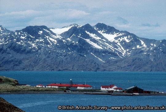 View of King Edward Point Research Station on South Georgia Island