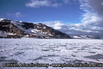 Summer sea ice around the Antarctic Peninsula