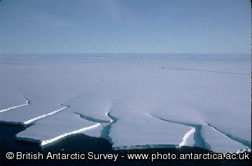Icebergs about to calve from ice shelf.  Viewed from the air.